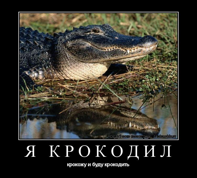 Откуда появилась фраза «я крокодил, крокожу и буду крокодить»