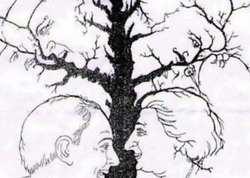 Сколько лиц вы видите на этой картинке?